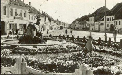 gantilopa-din-fata-primariei