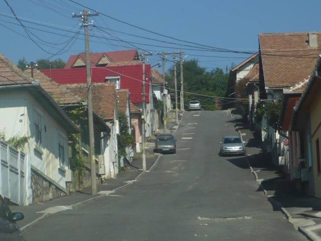 Strada Gradinilor