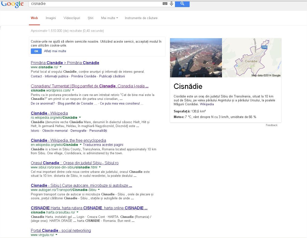 Cautare google dupa cisnadie