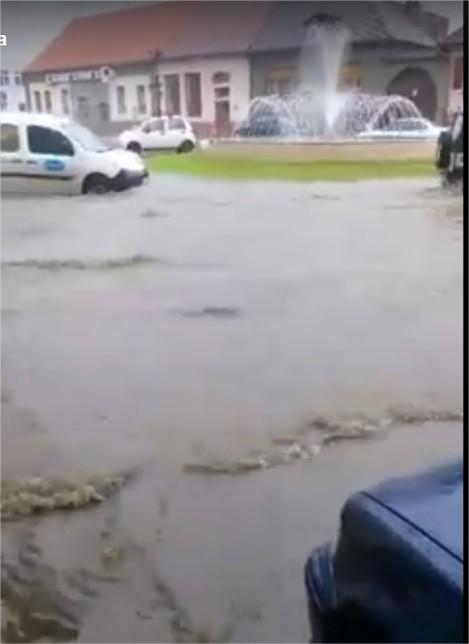 Ploaia care va veni si a venit 5