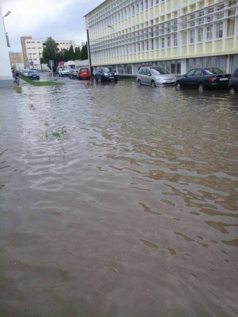 Ploaia care va veni si a venit2